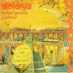 The Delays – Faded Seaside Glamour LP